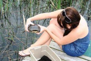 volunteer releasing a turtle